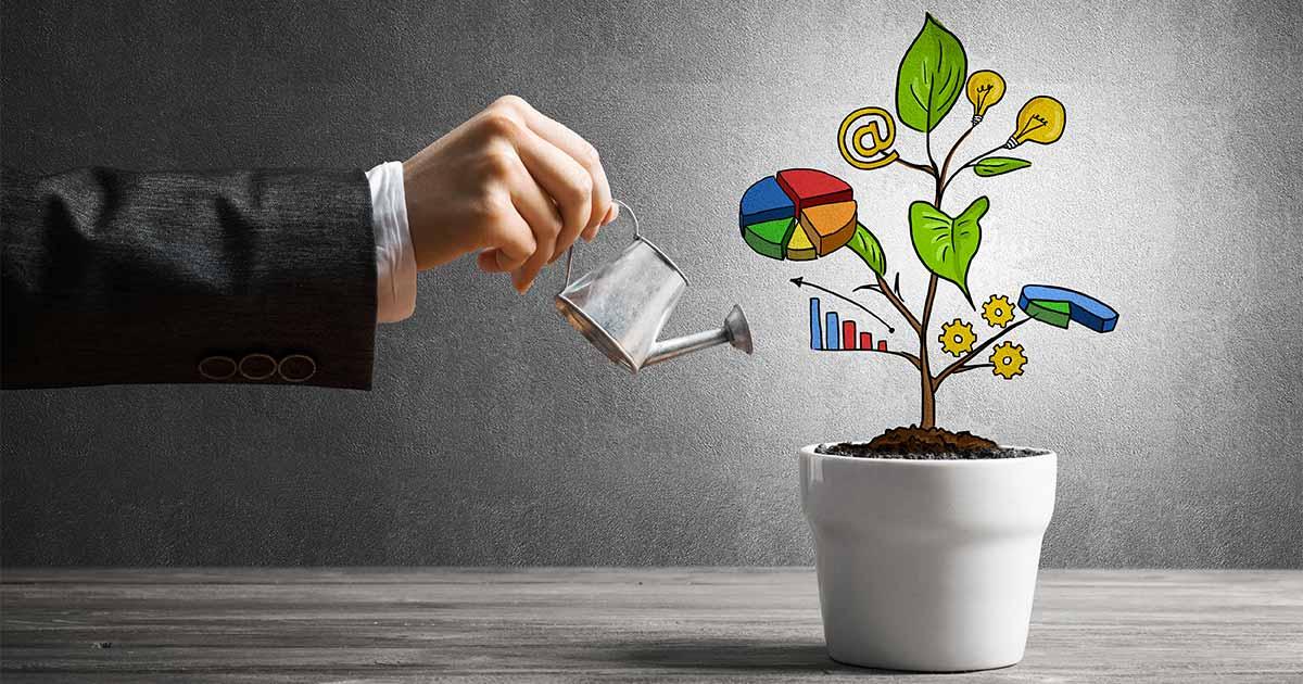Come creare una campagna di Lead Nurturing efficace. - Agenzia Inbound Marketing, Torino